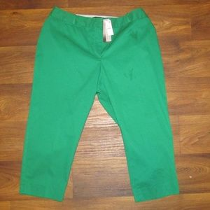 Talbots Green Size 16 WP Spring
